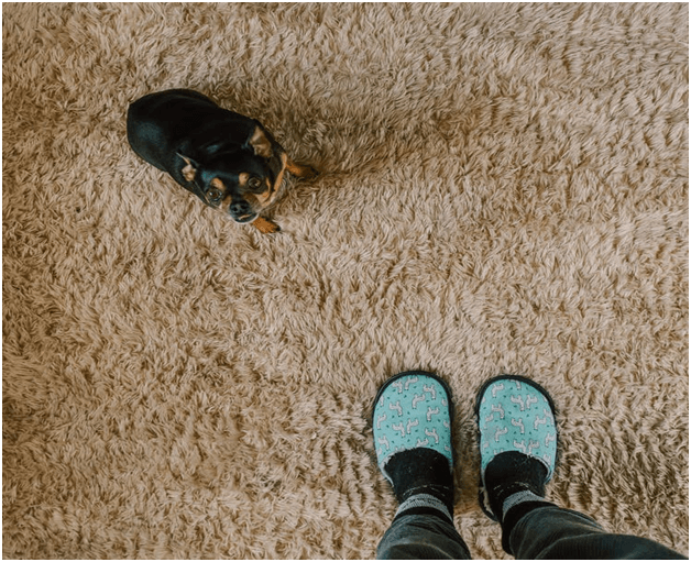Cornrows in Carpet: How to identify and avoid them ?