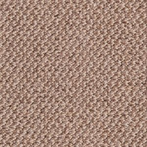 Aim High 860 Mid Beige Carpet