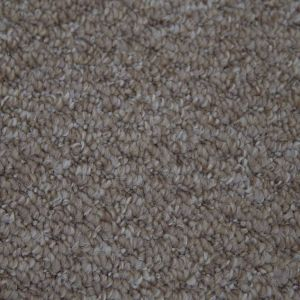 Alabama 312 Almond Polypropylene Heavy Domestic Carpet