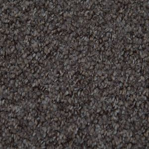 Alabama 994 Beach Heavy Domestic Heavy Domestic Carpet
