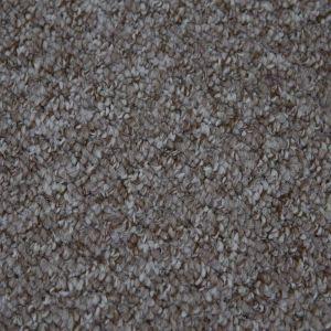 Alabama 995 Coconut Easyback Action Back Carpet