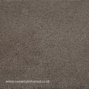 Anacona 71 Cream Bleach Cleanable Carpet