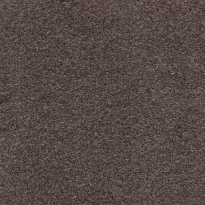 Delicious 02 Babe Brown Carpet