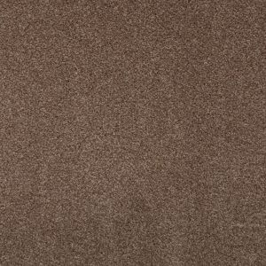 Splendid Beige 825 Carpet