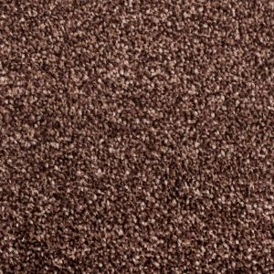 Splendid Brown 880 Carpet