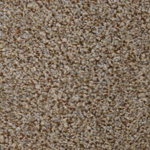 Burghley House 03 Cottesmore Leap Dark Beige Carpet