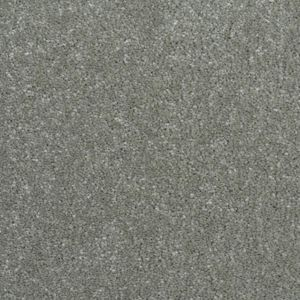 Caress Exclusive 14 Tempting Grey Carpet