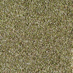 Castell Exclusive 14 Tower Beige Green Carpet