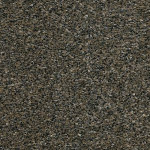 Cherish 01 Bronze Dark Beige Carpet