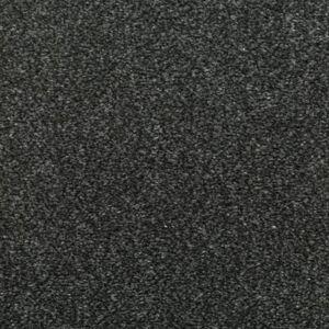 Chapter 02 Comfy Black Carpet