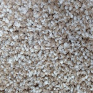 Conquest Saxony 04 Latte Dark Beige Carpet