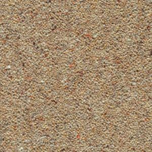Cornwall Elite 11 St Mawes Dark Beige Carpet