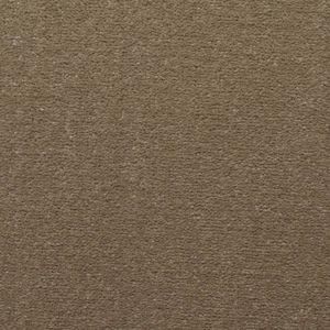 Chapter 03 Cozy Dark Beige Carpet