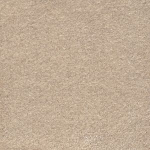 Delicious 06 Dearest Beige Carpet