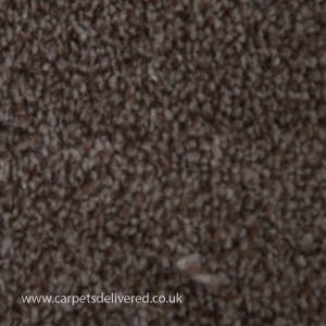 Canterbury 14 Peanut Butter Dark Beige Carpet