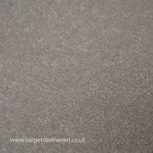 Wilmslow 02 Ermine White Twist Carpet