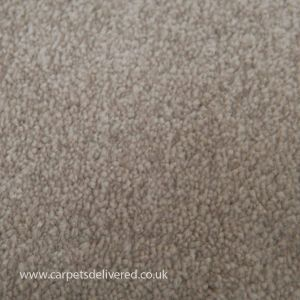 Wilmslow 01 Cream Light Grey Twist Carpet