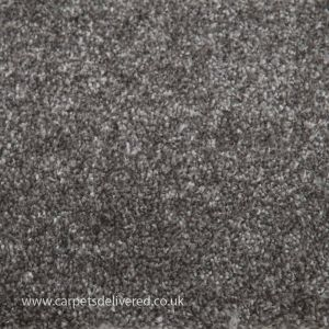 Soft Delight 830 Ash Polypropylene Carpet
