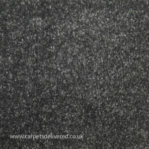 Soft Delight 820 Slate Bleach Cleanable Carpet