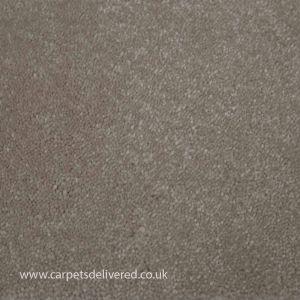 Soft Delight 440 Ivory Woven Back Carpet