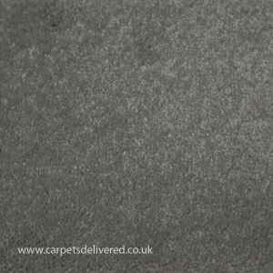 Soft Delight 880 Pearl Polypropylene Carpet