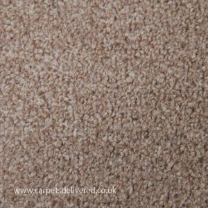 Valencia 07 Beige Mocca Twist Carpet