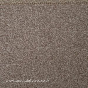 Adelaide 07 Pearl Grey Twist Pile Carpet