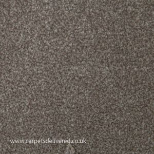 Adelaide 09 Light Grey Cream Twist Pile Carpet