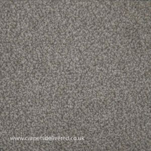 Adelaide 01 Dove Grey Steel Twist Pile Carpet