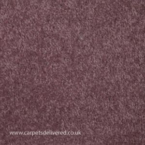 Prague 406 Rose Taupe Stain Defender Polypropylene Carpet