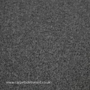 Edinburgh 116 Stone Stain Defender Polypropylene Carpet