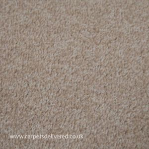 Edinburgh 305 Pearl Stain Defender Polypropylene Carpet