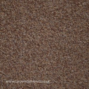 Edinburgh 918 Biscuit Stain Defender Polypropylene Carpet