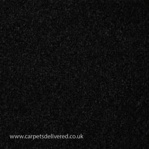 Valencia 161 Charcoal Stain Defender Polypropylene Carpet