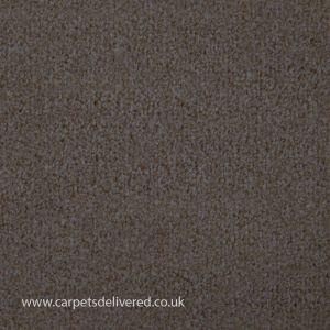 Valencia 312 Almond Stain Defender Polypropylene Carpet