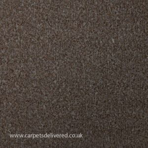 Valencia 918 Biscuit General Domestic Carpet