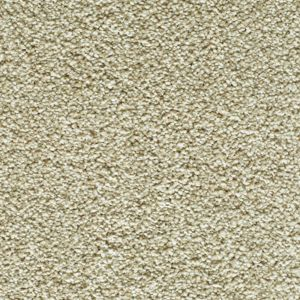 Enchanting Exclusive 10 Tantalising Dark Beige Carpet