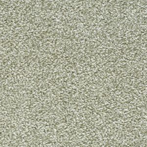 Enchanting Exclusive 11 Yearning Dark Beige Carpet