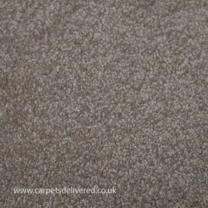 Barcelona 173 Suede Stain Defender Polypropylene Carpet