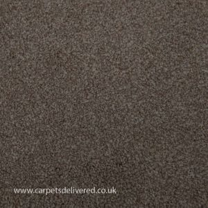 Barcelona 70 Stone Stain Defender Polypropylene Carpet
