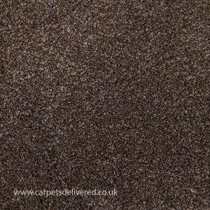 Barcelona 95 Beaver Stain Defender Polypropylene Carpet