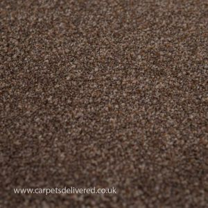 Barcelona 96 Chestnut Action Back Carpet