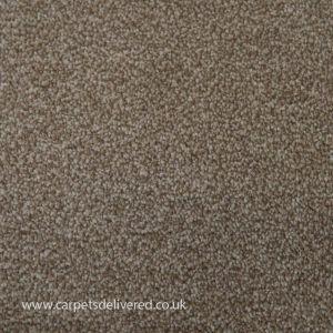 Liver Pool 172 Latte Stain Defender Polypropylene Carpet