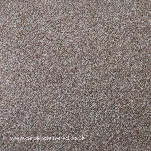 Liver Pool 91 Shale Stain Defender Polypropylene Carpet