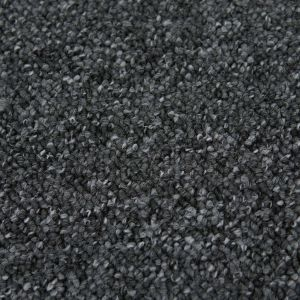 Canberra 116 Stone Stain Defender Polypropylene Carpet