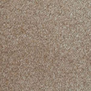 Delectable 06 Gentle Dark Beige Carpet