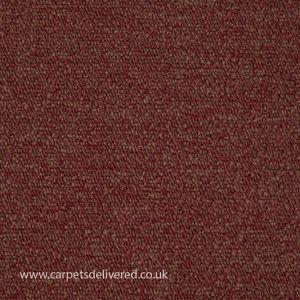 Vienna 222 Sunset Stain Defender Polypropylene Carpet