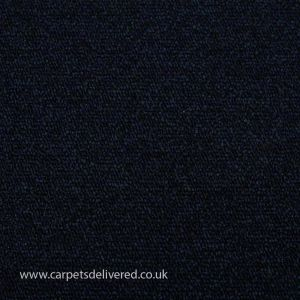 Vienna 282 Navy General Contract Carpet