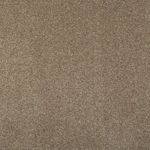 Splendid Light Beige 785 Carpet