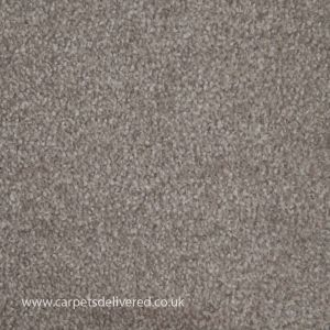 Newcastle 172 Berber Stain Defender Polypropylene Carpet